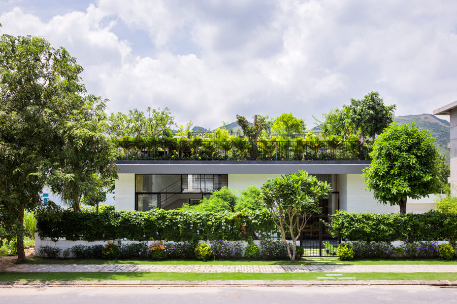 Thiết kế vườn trên sân thượng cho biệt thự ở Nha Trang - 02