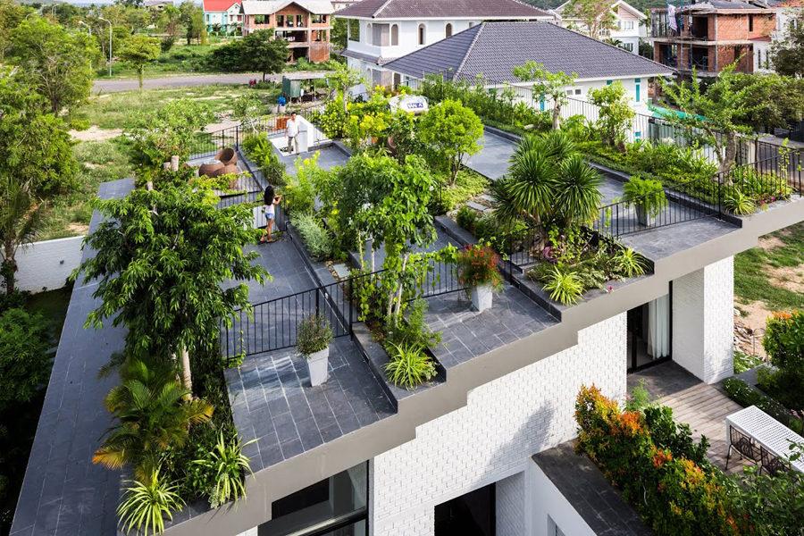 Thiết kế vườn trên sân thượng cho biệt thự ở Nha Trang - 04