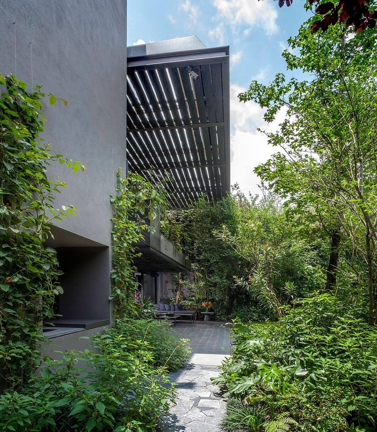 Khám phá căn biệt thự cây xanh như rừng rậm ở Mexico