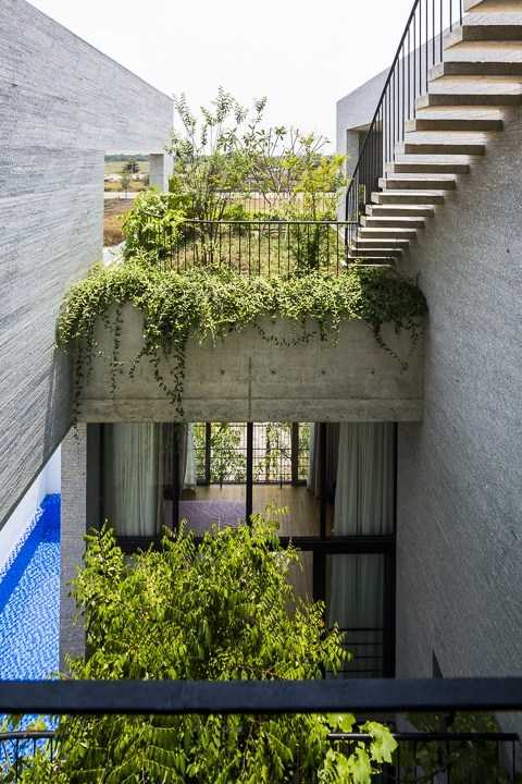 Ngỡ ngàng căn biệt thự xanh hiện đại trong lòng thành phố HCM