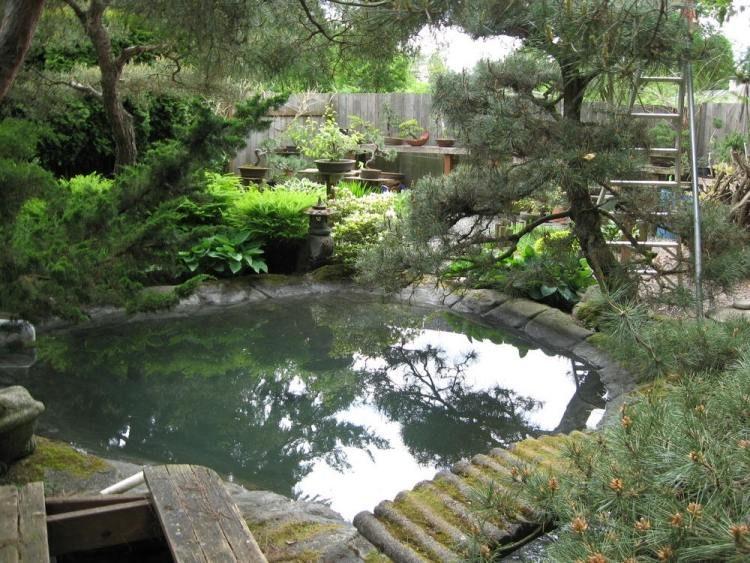 Học cách dùng cây bonsai trang trí nhà dịp Tết 2018