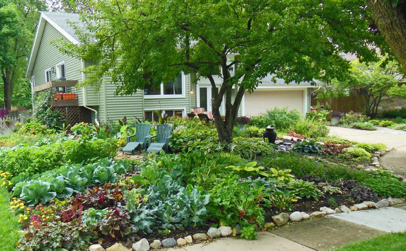 Lên ý tưởng thiết kế sân vườn đẹp cho người mới xây nhà 04